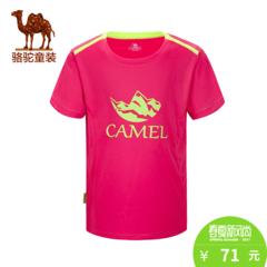 小骆驼童装夏季儿童速干T恤中大童男女童速干短T