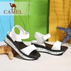 骆驼女鞋 真皮魔术贴中跟厚底女士凉鞋 2016新款夏季鞋子摇摇鞋
