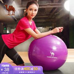 骆驼瑜伽球加厚减肥平衡运动健身球儿童孕妇分娩瘦身瑜珈球