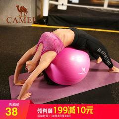 骆驼户外瑜伽球套装 加厚健身球平衡弹力运动瑜珈球健身球瘦身球