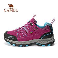 駱駝&8264登山隊系列 戶外情侶款登山鞋男女低幫爬山徒步休閑鞋
