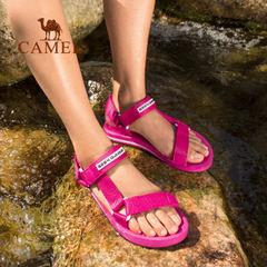 【清倉特賣】駱駝&8264戶外沙灘鞋男女夏季防滑耐磨緩震運動涼鞋