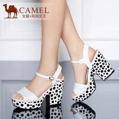 Camel骆驼女鞋 时尚蜥蜴纹羊皮开边珠牛皮腕带2015春夏超高跟凉鞋